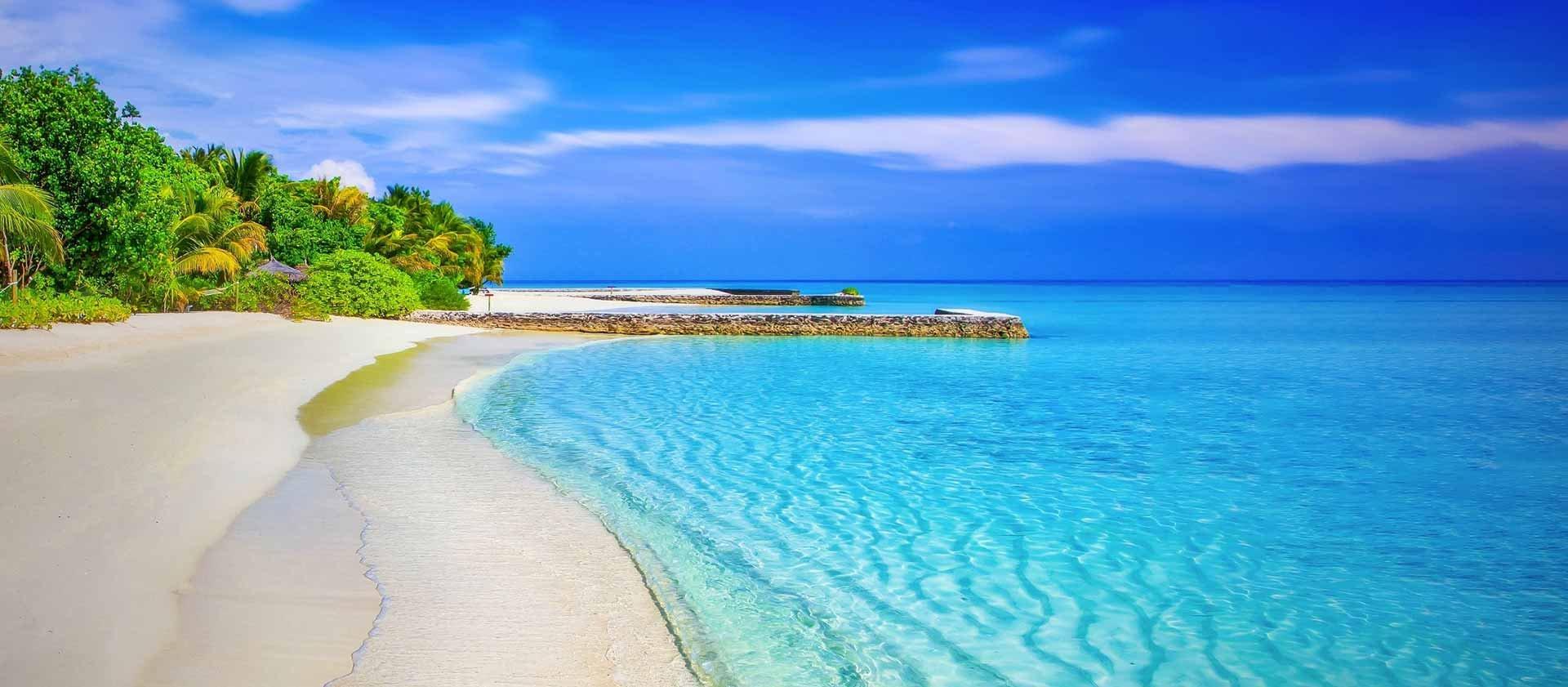 beach_bg_banner